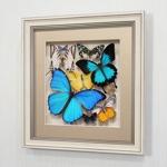 Сборка с синими доминирующими бабочками, арт.: 92а-01