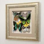 Сборка с зелеными доминирующими бабочками, арт.: 92с-02