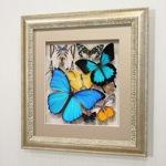 Сборка с синими доминирующими бабочками, арт.: 92с-01
